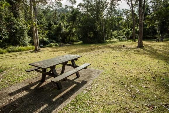 The picnic area