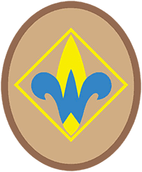 Fourth Grade - Webelos Requirements Image