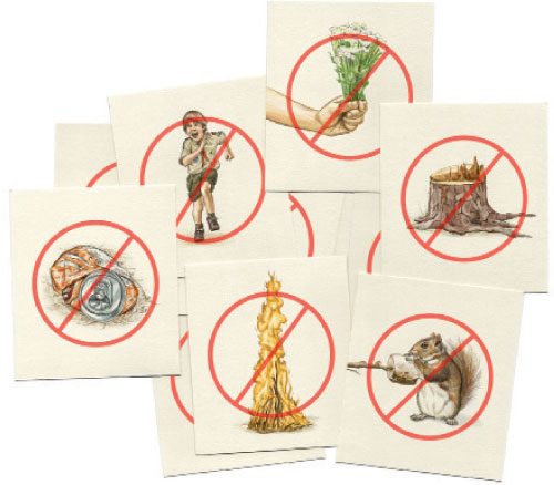 A card game to help you turn Leave No Trace principles into