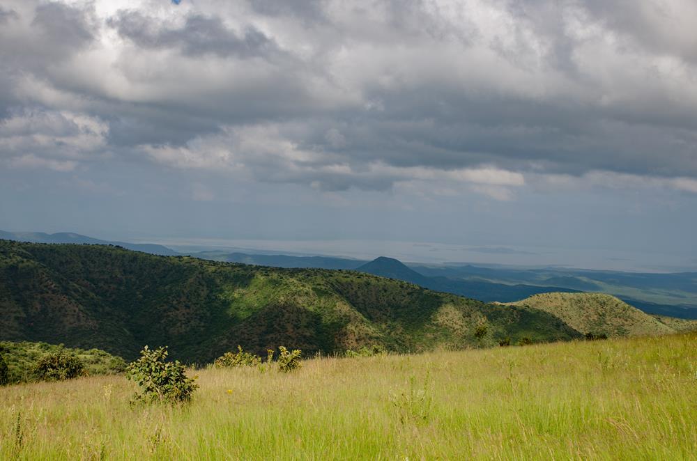 Makena Hills