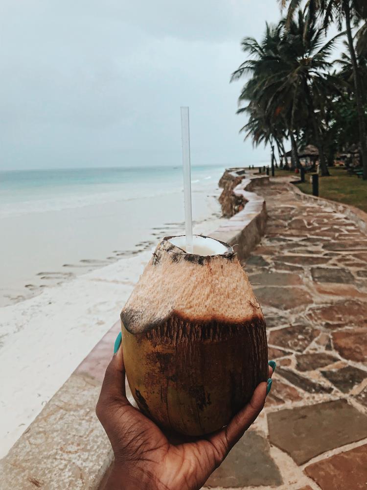 Travel_Vlogger