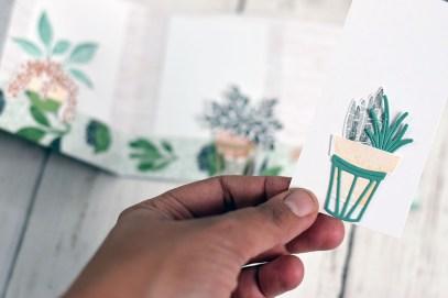 verriere-jardiniere-en-papier-mini-album-plantes-6