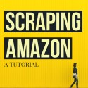 Scraping Amazon Tutorial (Custom)