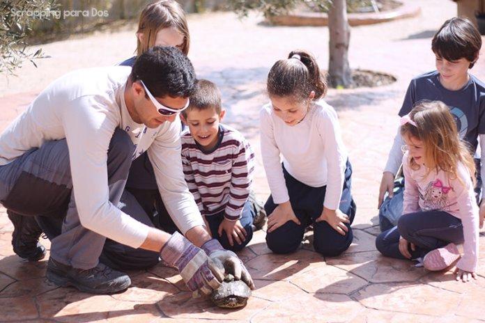 ideas para jugar cada mes con tus hijos