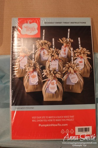 September 2015 Paper Pumpkin - awesome monthly craft kit in the mail