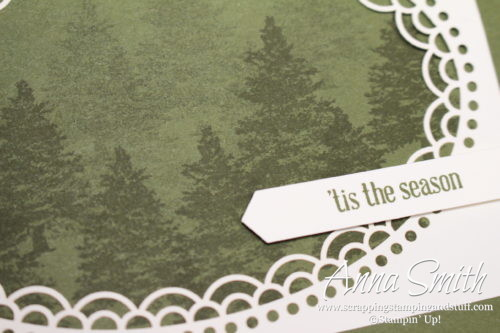 Simple Christmas card idea made with the Stampin' Up! Delightfully Detailed laser cut paper and Rooted in Nature and Itty Bitty Greetings stamp sets