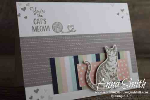 Cute cat card made with the Stampin' Up! Nine Lives stamp set and matching cat punch #simplestamping