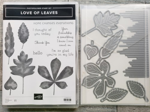 These 10 stamping techniques to use with leaves are perfect for beautiful fall cards. Stained glass, sponging, spritzing, blends markers, a keyhole card, and more. Try them today!