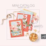 2021 Stampin Up January-June Mini Catalog
