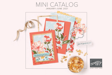 Stampin Up 2021 January-June Mini Catalog