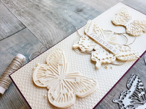 Take a look at this slimline butterfly card and learn how to emboss a slimline card with a smaller embossing folder!