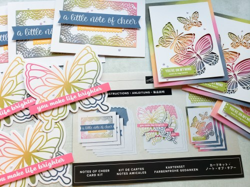 Stampin Up card kits are a wonderful way to learn to make cards, take a craft on the go, or get your friends to try crafting!