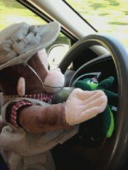 Watch out World, Monkey at the Wheel!