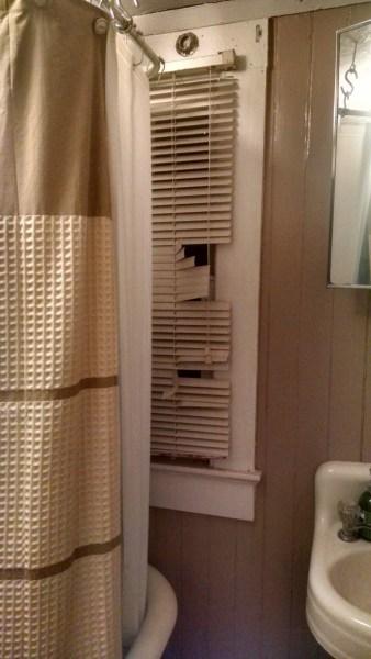 Downstairs bath: unfortunate window placement