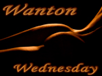 Take Part In Wanton Wednesday
