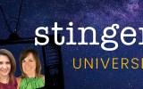 stinger-universe-header