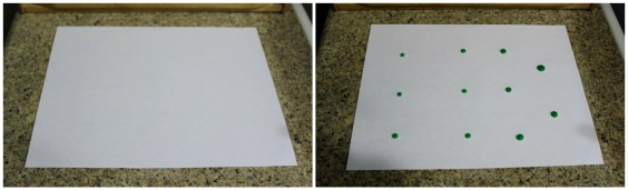 PaperAntExperiment