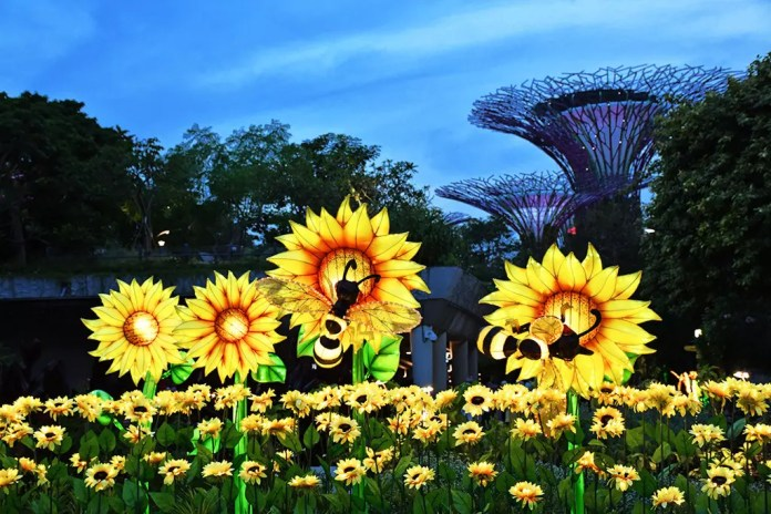 Gardens by the Bay Mid-Autumn Festival 2017 Field of Sunshine