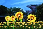 Gardens by the Bay Mid-Autumn Festival 2017