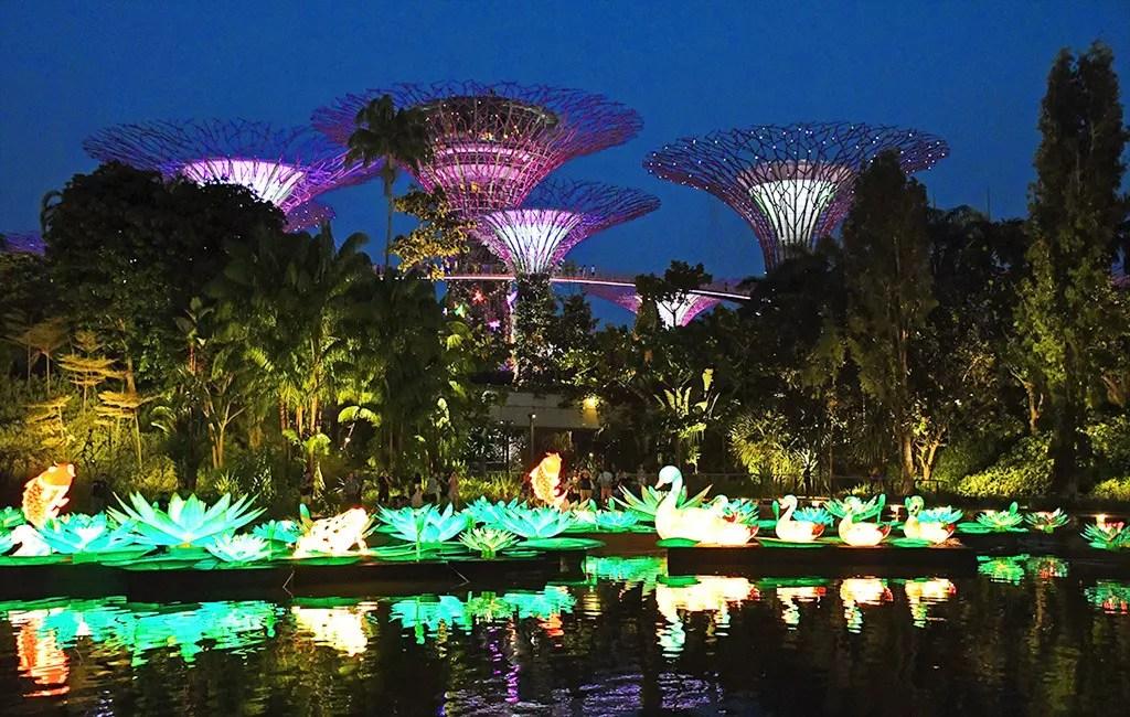 Gardens by the Bay Night Illumination