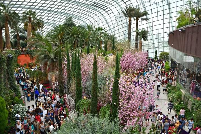 Sakura Japan Fair 2018 - Flower Dome