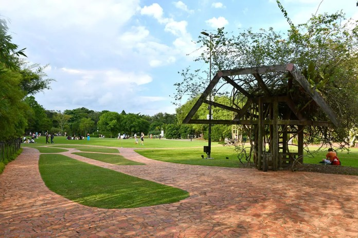 Singapore Botanic Gardens Eco Lake Area.