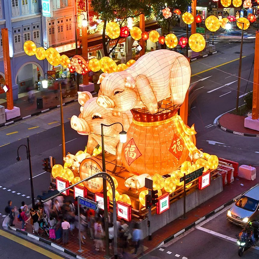 Golden Pigs to celebrate Year of the Pig 2019.