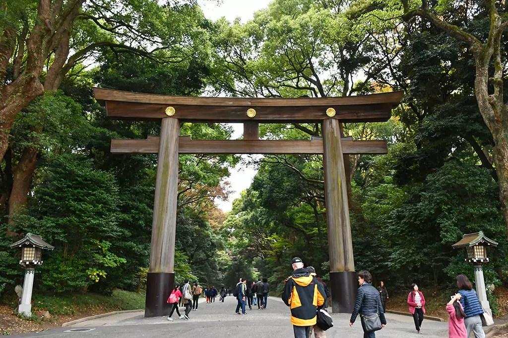Meiji Shrine Wooden Torii Entrance