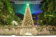 Jewel Changi Airport Christmas 2020