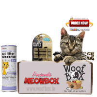 MeowBox Monthly Cat Subscription Boxes