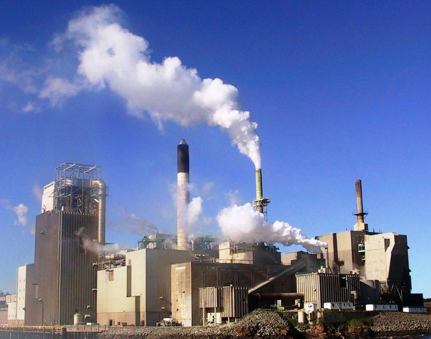 Pulp And Paper Mill