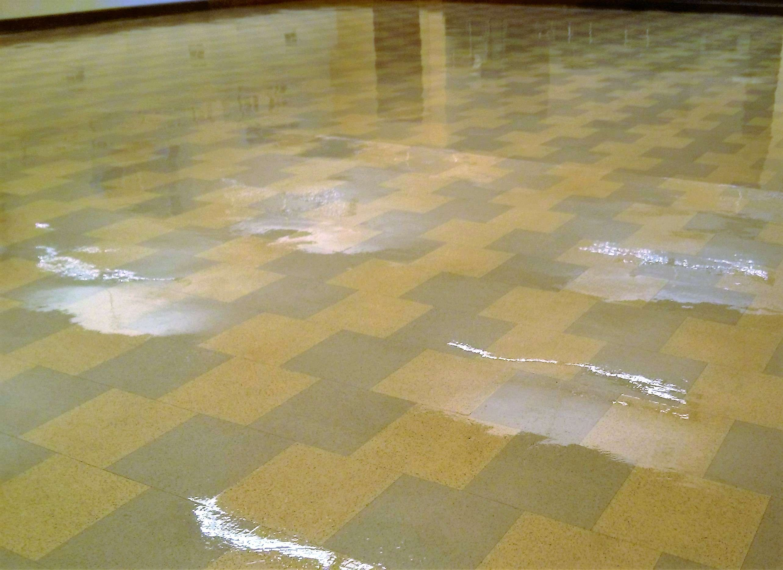 Restore shine to vinyl floor of old vct floor tile in minneapolis old vct floor tile stripped sealed finished in minneapolis worship center dailygadgetfo Gallery