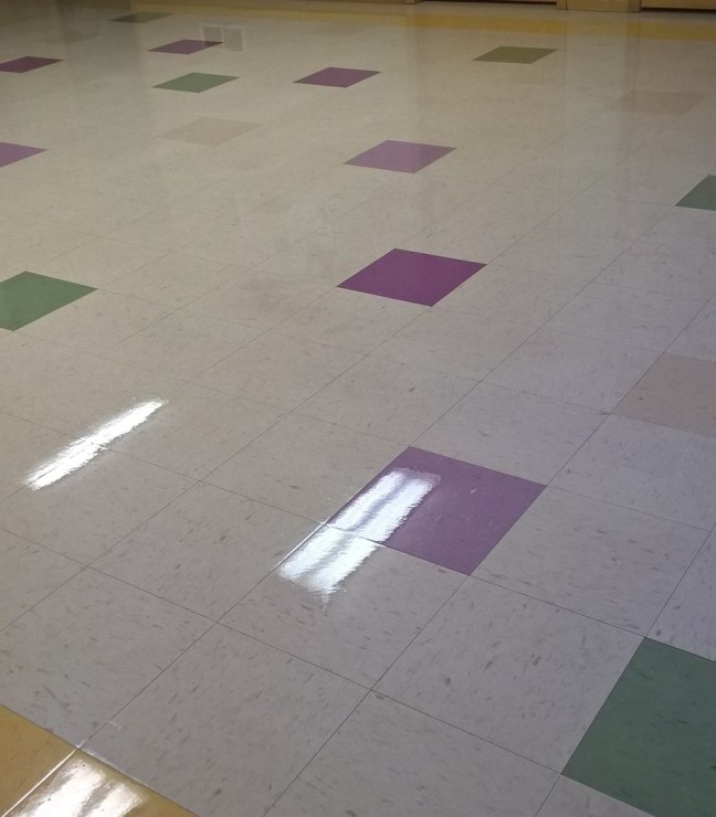 VCT Scrub and Re-Coat Services MN