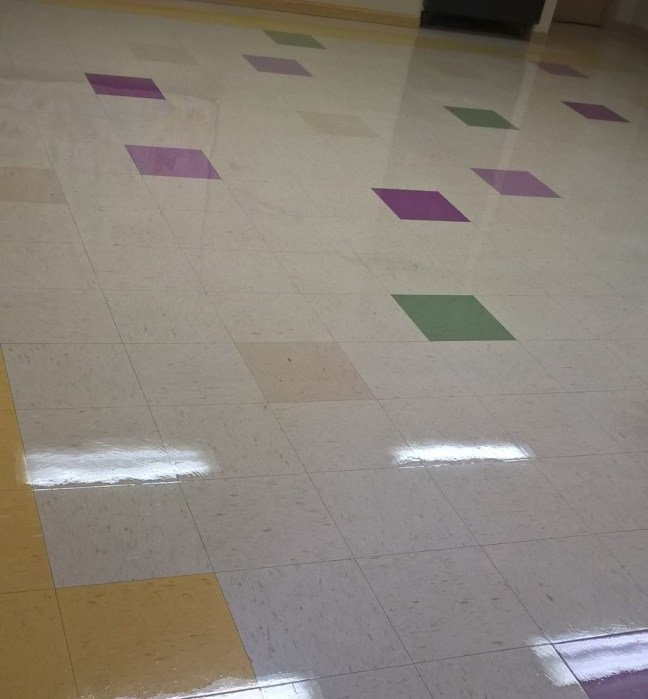 VCT Scrub and Re-Coat Services Twin Cities