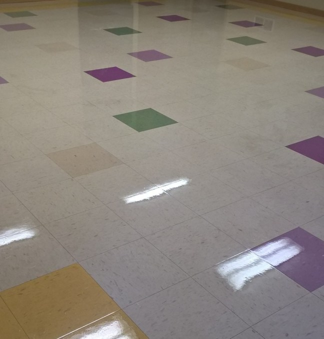 VCT Scrub and Re-Coat Services in St Paul