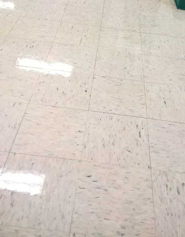 Old VCT Tile Floor Restoration Service Twin Cities