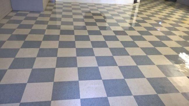 Old VCT Floor Restored Twin Cities