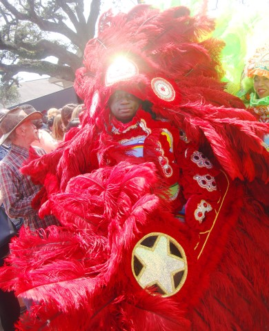 This Mardi Gras Indian Chief was telling everyone that he was the prettiest.