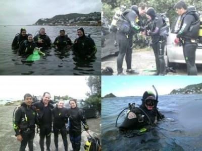 Dive ClubDiving Adventures, Dive Community, Dive Club, Wellington Diving, Scuba - New Zealand Sea Adventures, Dive Trips, Fun Diving, SCUBA Trip, Dive Gear Packages