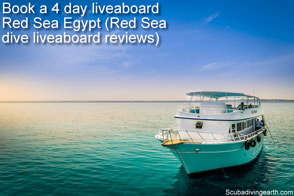 Book a 4 day liveaboard Red Sea Egypt - Red Sea dive liveaboard reviews