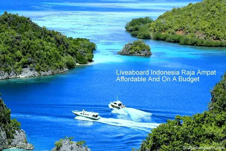 9 Affordable Indonesian Raja Ampat liveaboards (Budget Raja Ampat Diving)