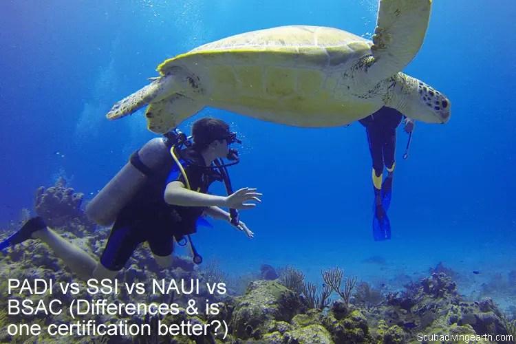 PADI vs SSI vs NAUI vs BSAC (Differences & is one certification better?)