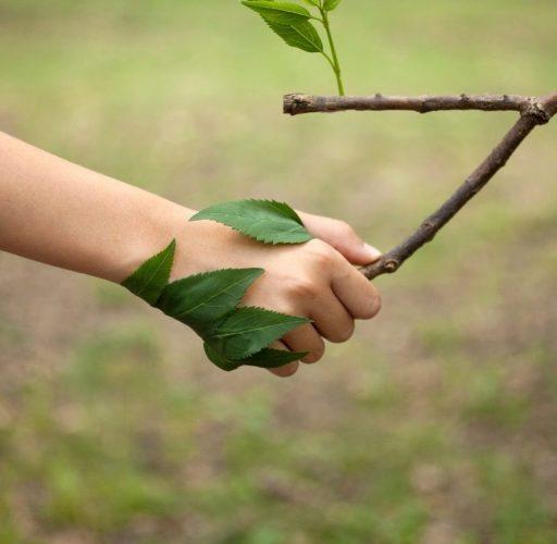 Corso di giornalismo ambientale e culturale promosso da Sapereambiente