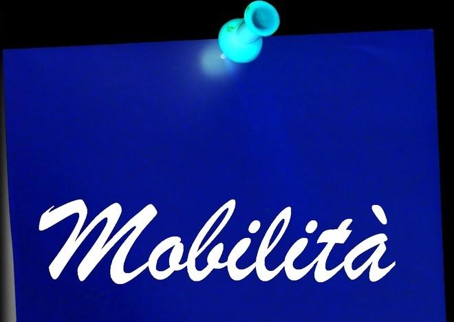 Mobilità 2019 Cosa Fare Se Il Punteggio è Errato Modello