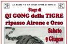 "Stage: Qi Gong degli animali, ""LA TIGRE"""