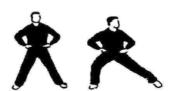 Taoisti esercizio 14