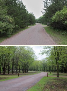 Vegetation removal at Big Sioux Rec Area - 2013 to 2015