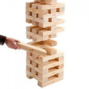Ecosystems are like the game of Jenga...take one piece away you don't know what will happen.