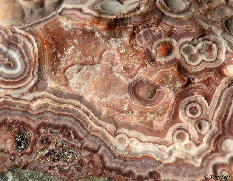 Macro Photo - Mexican Crazy Lace Agate