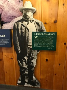 Teddy Roosevelt Display - Natural Bridges National Monument